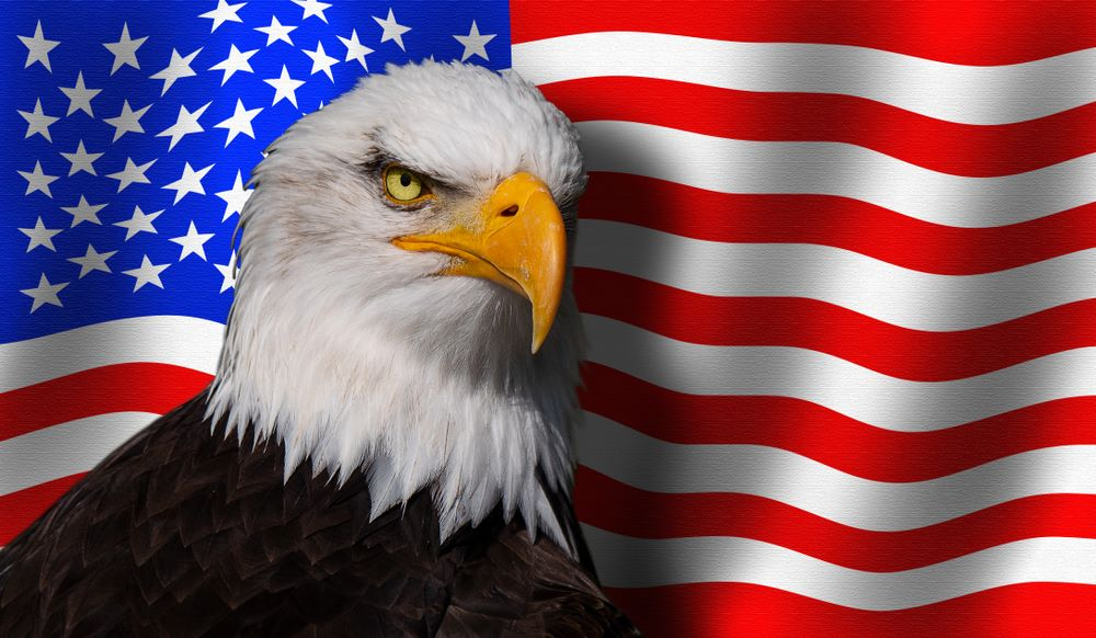 Это Америка