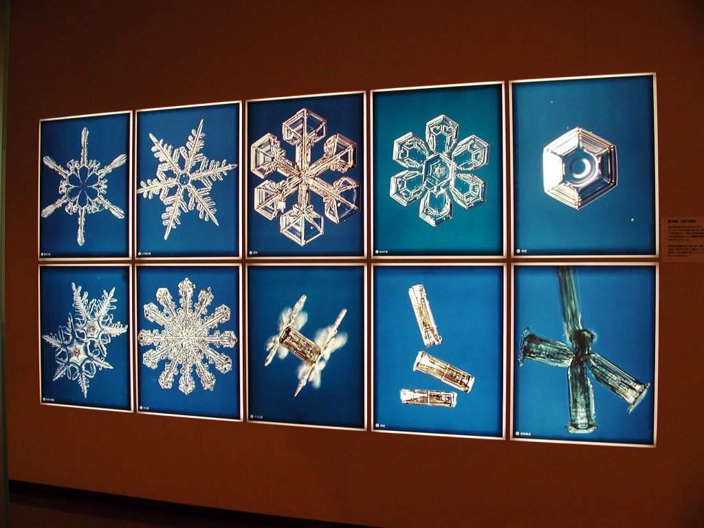 Музей снега
