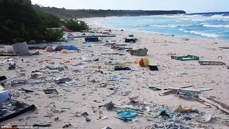 Пляж не пригодный для отдыха