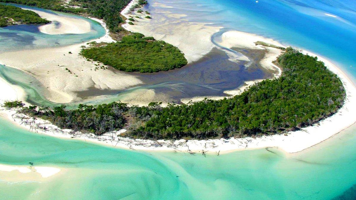 Остров со смертоносными медузами
