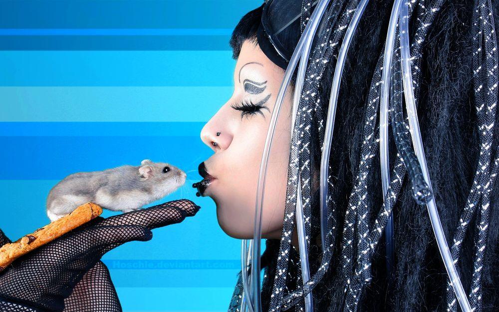 поцелуй мышки