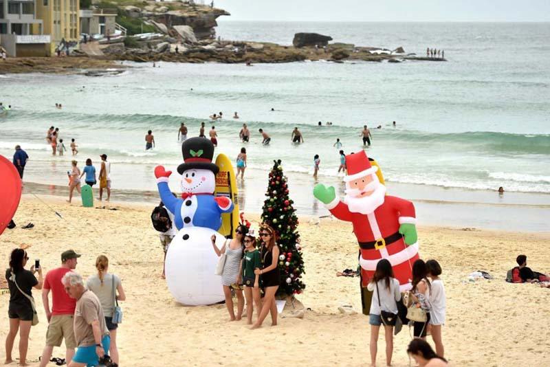 Австралия рождественский декор и украшения