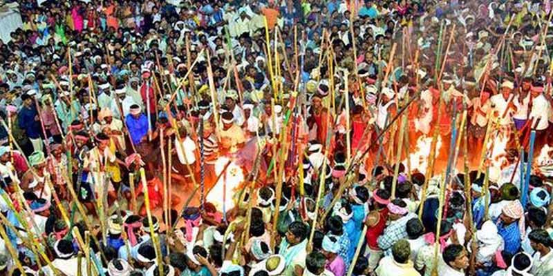 Фестиваль Банни