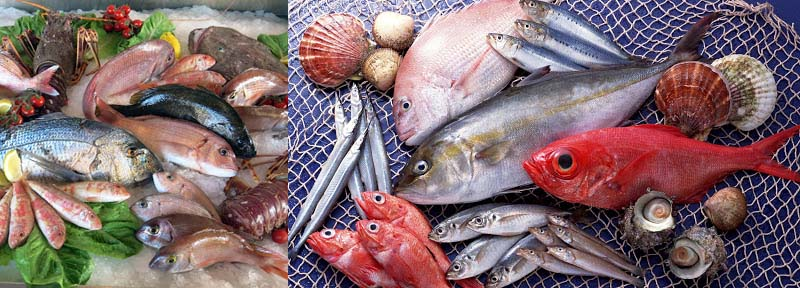 Другое применение рыбы
