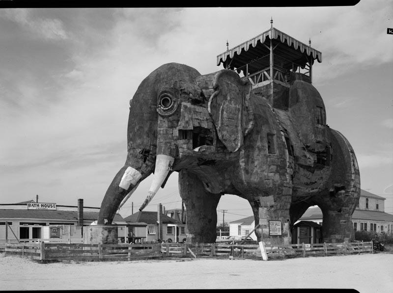 в 1881 году в районе Маргейт, слон  Люси