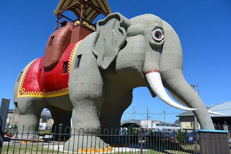 Слониха Люси — уникальный отель и музей в брюхе слона