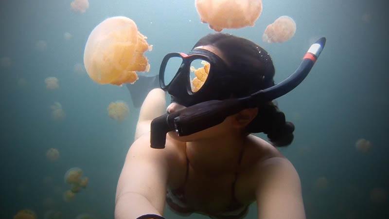 Остров Эйл-Малк  с медузами в озере