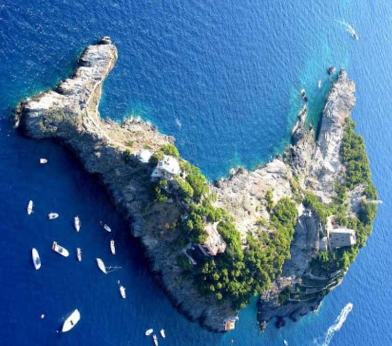 Остров-дельфин