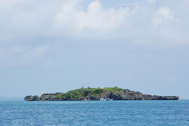 Крокодиловый остров