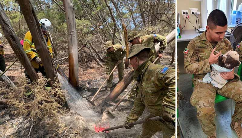 Солдаты очень трепетно отнеслись к спасенным во время пожаров коалам.