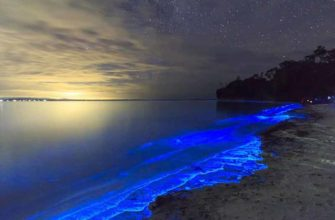 От чего светятся берега на острове Ваадху