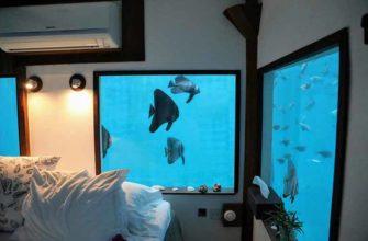 Подводный номер отеля The Manta Resort в Танзании