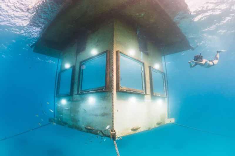 Богатый подводный мир Танзании позволяет созерцать его красоты не только опытным дайверам