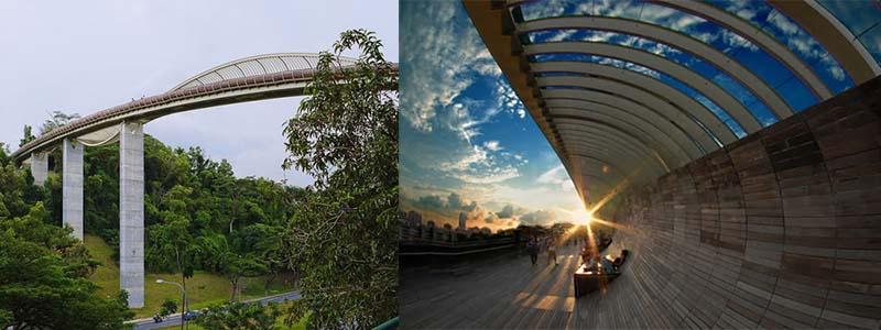 Мост «Волны Хендерсона» — работа английских и сингапурских инженеров
