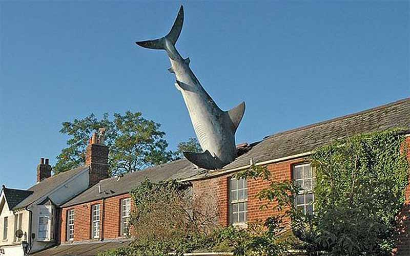 Монумент акулы на крыше, как выражение гнева и бессилия перед атомными катастрофами
