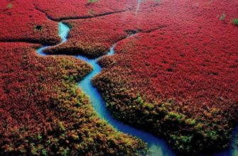 «Красный пляж» в Китае, где нет ни одной песчинки