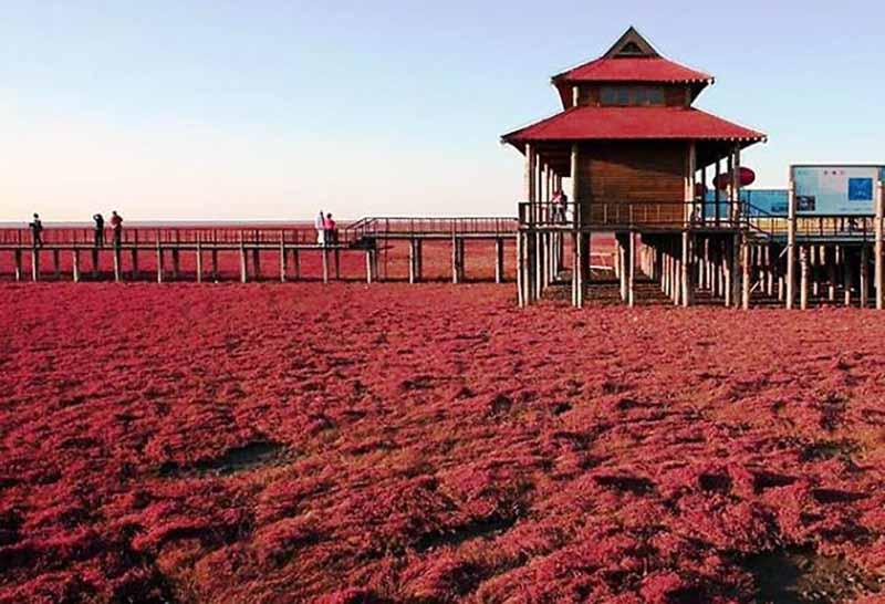 Как доехать до Красного пляжа