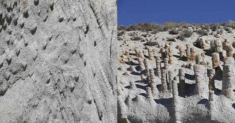 Каменные столбы Находится это место у реки Оуэнс в штате Калифорния