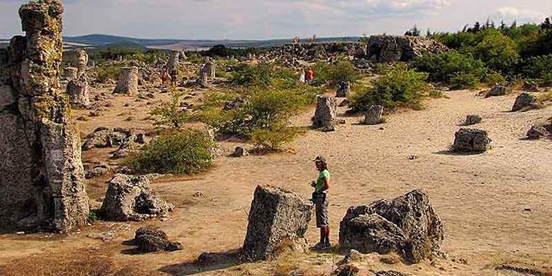 Туристов пускают на территорию «Каменного леса» каждый день с 9 утра до 6 вечера. За вход придется заплатить, билет стоит 3 лева.