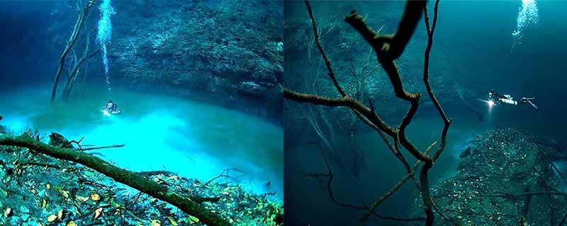 Нырнуть в глубины реки Сенот Анжелиты можно не каждому, погружение разрешено только опытным дайверам, которые имеют соответствующий допуск.